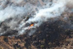 Big Bend Fires 2011 046