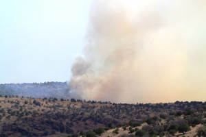 Big Bend Fires 2011 056