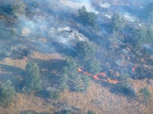 Big Bend Fires 4-10-11 092