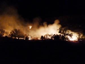 Big Bend Fires 4-10-11 114