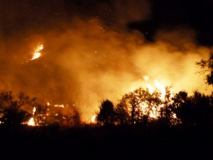 Big Bend Fires 4-10-11 115