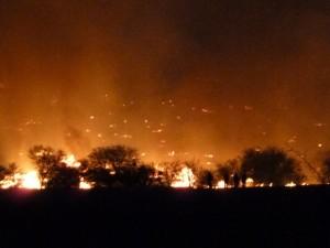 Big Bend Fires 4-11-11 005