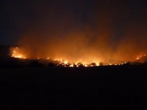Big Bend Fires 4-11-11 007