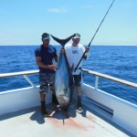 This bluefin was caught by one of the anglers on the Excel, it weighed 185 lbs and is the biggest Blluefin caught all year.